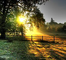 - Sunrise over Church Meadow, Chelsworth by Christopher Cullen