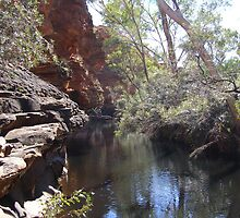 The Waterway! Garden of Eden, Kings Canyon. Nth. Territory, Australia by Rita Blom