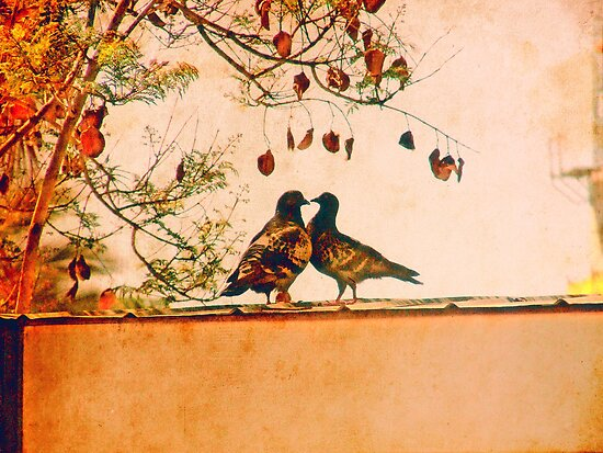 Love is in the air by Constanza Caiceo