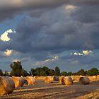 Evening Glow over the Hay. by Julie Sleeman