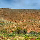 Saltbush and Red Hills by Jeff Catford