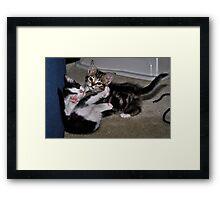 """ Play Time "" Framed Print"