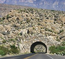 Tunnel at Big Bend National Park by Susan Russell