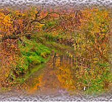 """ Soap opera ""   autumn  -  landscape  ( Pastiche - Daub?!?) Perheps !. by  Brown Sugar . Views (61) Thanks !!! by © Andrzej Goszcz,M.D. Ph.D"