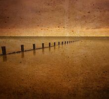 Welsh Groynes by Mark Robson