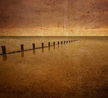 Welsh Groynes by Mark Robson