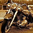 Harley  Davidson  . Views (217) , Favs (4). Thank you Easy Riders !!!! by AndGoszcz