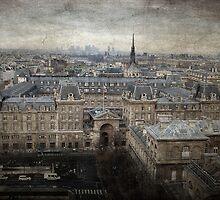 Gargoyle view of Paris from Notre Dame by Francesco Malpensi