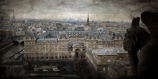 Gargoyle view of Paris from Notre Dame by Francesco Malpensi
