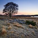 Winter Sunrise, Lochindorb by Christopher Thomson
