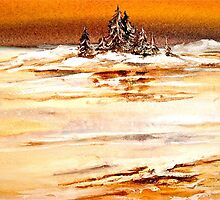 Landscape...Winter on the Great Lakes by ©Janis Zroback