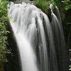 Rough Loch Falls by Allen Gaydos