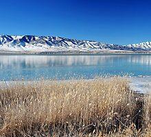 Utah Lake - First Ice by Ryan Houston