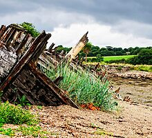 Abandoned boat, Saltmills, County Wexford, Ireland by Andrew Jones