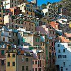 Rio Maggiore, Cinque Terre by Karen Havenaar