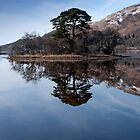 Loch Awe, Scotland, United Kingdom by Brian Sharland