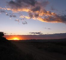 Sunset ~ over dirt road in the desert by CynLynn