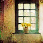 The Window (St Fagans Museum) by mbricknell