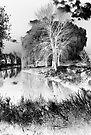Reflection in Pond - Inverted - Kanata Ontario by Debbie Pinard