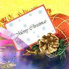 It's Christmas! by Silvia Ganora