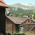 Ski Slopes- Colorado by johntbell