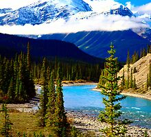 Saskatchewan River Blues by Frank Bibbins