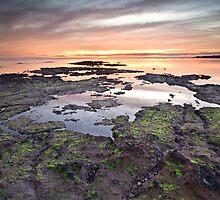 Rickett's mossy sandstone by RonnieTan