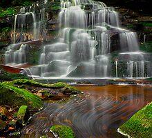Falls of Elakala 2: Flow by LeeAnne Emrick