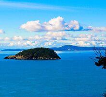 Deception Island by richchop