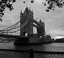 London tower bridge by Vincent Lamb