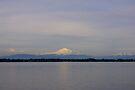 late afternoon mt baker over drayton harbor by dedmanshootn