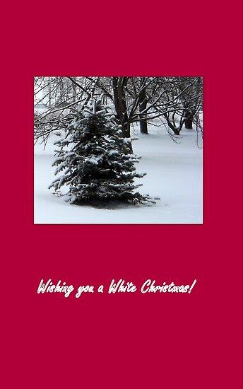 Wishing you a White Christmas! by debbiedoda