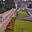 York City Walls by David Davies