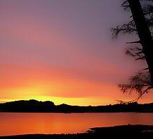 Frosti Sunrise by Gail Bridger