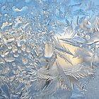 Frost Detail by Elizabeth Bennefeld