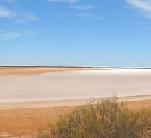 Panoramic: Salt Flats by Anne-Louise Vague