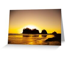 sunset gold, james island, washington, usa Greeting Card