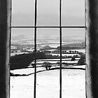 Cornish Winter View by Laura Davey