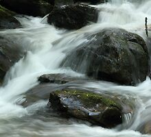 Anna Ruby Falls Stream by leftwinger7