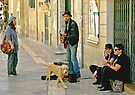 Singing for his Supper - Lecce Italy by Debbie Pinard