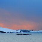 Winter Sky by Anita Orheim