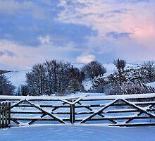 Snowy Gates by Lynne Morris