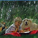summer reading by jashumbert