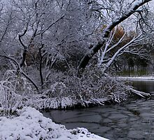 Winterlude!!! by Larry Trupp