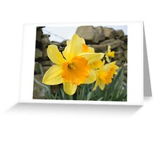 Spring Arrives! Greeting Card