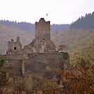 Manderscheid Castle in the Fall by Gayle Dolinger
