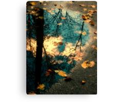 Reflections of Blackbird Island Canvas Print