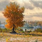 Magic fall on the river bank by mike2048