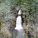 natural bridge waterfall by elh52