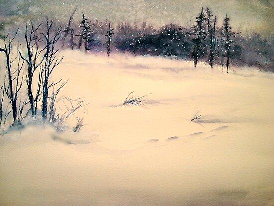 Landscape....Midwinter Light by ©Janis Zroback
